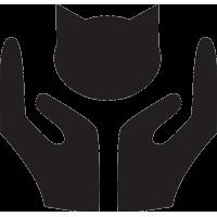 Руки которые защищают кошку