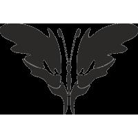 Бабочка 21