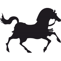 Бегущая Лошадь 1