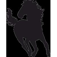 Бегущая Лошадь 2