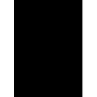 Кот Саймона на задних лапах
