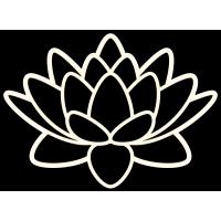 Чёрно-белый цветок лотоса