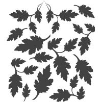 Камуфляжные пятна - листья, набор
