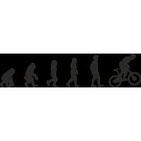 Эволюция от обезьяны до Велосипедиста 1