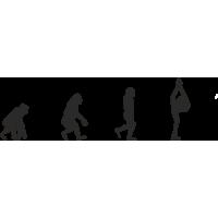 Эволюция от обезьяны до Фигуристки