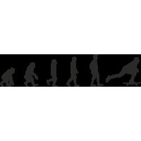 Эволюция от обезьяны до Скейтбордиста 1