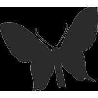Бабочка 17