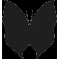 Бабочка 38