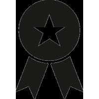 Медаль со звездой