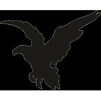 Орел 34