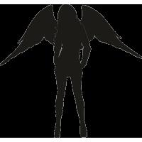 Сексуальная девушка Ангел 1