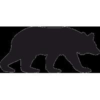 Медведь Барибал