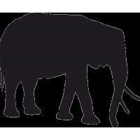 Слон 3