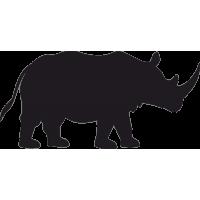 Носорог 1