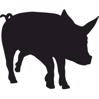 Свинья 3