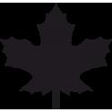 Листья Клена 2