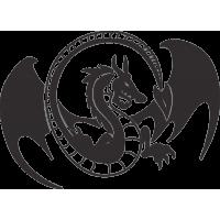 Татуировка Дракон 33