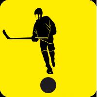 Начинающий водитель Хоккеист