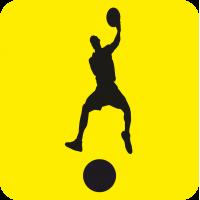 Начинающий водитель Баскетболист