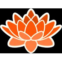 Оранжевый цветок лотоса