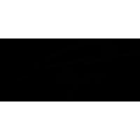 Логотип с адресом сайта Опель тигра