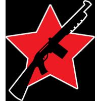 Звезда 5