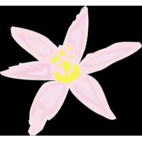 Цветок 120