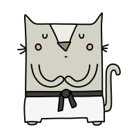 Кот каратист