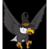 Орел с ведьмовской шляпой