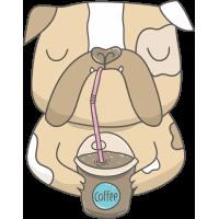 Бульдог со стаканом кофе