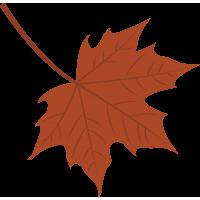 Осенний листок