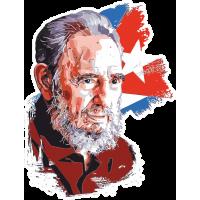 Фидель Кастро на фоне кубинского флага