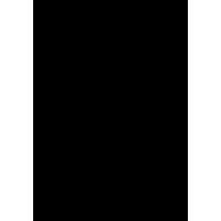 Логотип Группы Сплин. Русский Рок Фестиваль Нашествие 2018