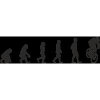 Эволюция от обезьяны до Велосипедиста 2