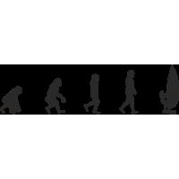 Эволюция от обезьяны до Виндсерфера 2