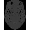 медведь2